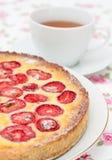 Syrligt med vita choklad och jordgubbar Fotografering för Bildbyråer