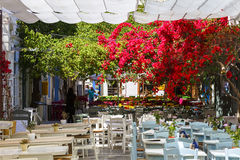 Syros Photo stock