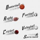 Syrsan volleyboll, fotboll, basket, squash, rugby förser med märke logoer och etiketter för några bruk Royaltyfria Bilder