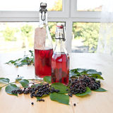 Syrup and elfer berries Stock Photos