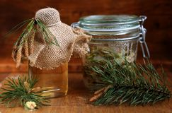 Syrup Made Of Pine. Natural medicine Stock Photography
