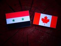 Syryjczyk flaga z kanadyjczyk flaga na drzewnym fiszorku odizolowywającym zdjęcie royalty free