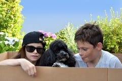 Syskon och hund Royaltyfria Bilder