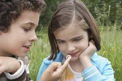 Syskon som utomhus håller ögonen på Caterpillar Royaltyfri Fotografi
