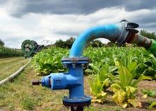 Système d'irrigation agricole avec bien de l'eau Photographie stock