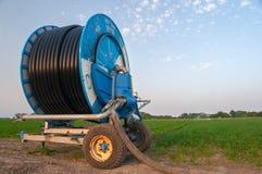 Système d'irrigation arrosant le champ agricole des carottes et du persil Image stock