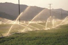 Système d'irrigation dans le San Joaquin Valley, CA Photographie stock