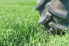 Système d'irrigation sur des roues Jeune élevage de blé Photos stock