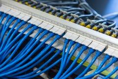 Système de câblage de réseau, tableau de connexions d'UTP avec des câbles reliés image libre de droits