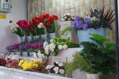 Système de fleur Photo stock