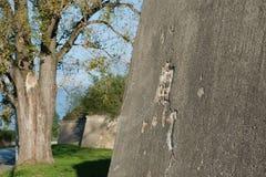Système de fortification de rno de ¡ de Komà photos libres de droits