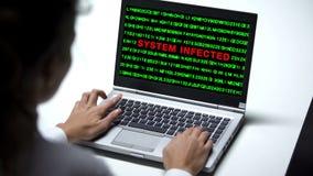 Système infecté sur le moniteur d'ordinateur portable, bureau travaillant de femme, attaque d'entaille, cybercriminalité photos stock