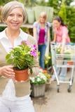 Système mis en pot de jardin de fleur de prise aînée de femme Image libre de droits