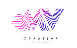 Système mv M V Zebra Lines Letter Logo Design avec des couleurs magenta Images stock