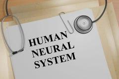 Système neural humain - concept médical Photos libres de droits