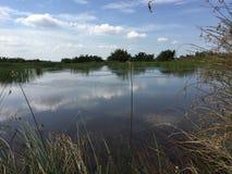Systèmes d'aquiculture, ferme étendue de culture de crevette de tigre Images stock