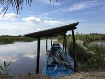 Systèmes d'aquiculture, ferme étendue de culture de crevette de tigre Photographie stock libre de droits