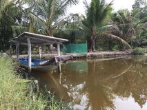 Systèmes d'aquiculture, ferme étendue de culture de crevette de tigre Image stock