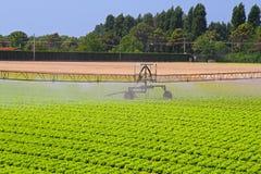 Systèmes d'irrigation photo stock