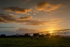 Syst?me d'irrigation central de pivot dans un domaine vert Coucher du soleil au-dessus des terres cultivables dans la campagne photos libres de droits
