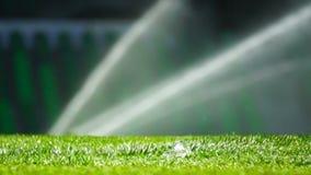 System för fotboll- eller fotbollfältbevattning av automatiskt bevattna gräs arkivfilmer