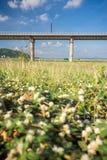 System för stångtransportinfrastruktur Järnvägsbro över let Royaltyfri Fotografi