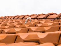 System för taknedgångskydd Arkivfoto