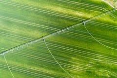 System irygacyjny w pszenicznym polu Zdjęcie Stock