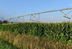 System irygacyjny w Wisconsin kukurydzanym polu Zdjęcie Royalty Free