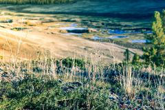 System of rivers and lakes in the mountain valley. View from a height royalty free stock image