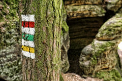 System of tourist track signs painted on the tree by the rocks Royalty Free Stock Image