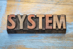System word abstract in wood type Stock Photos