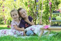 Syster och broder som har gyckel på picknick Royaltyfri Foto