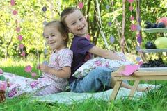 Syster och broder som har gyckel på picknick Royaltyfria Bilder