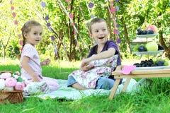 Syster och broder som har gyckel på picknick Royaltyfri Bild