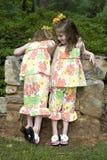 systrar Arkivbilder