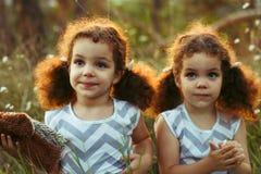 Systrar kopplar samman små barn som utomhus kysser och skrattar i sommaren Lockiga gulliga flickor Kamratskap i barndom Varm sunl Royaltyfri Foto