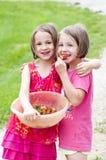 Systrar som delar jordgubbar Fotografering för Bildbyråer