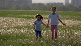 Systrar som kör i maskrosfält och skrattar lycklig barndom lager videofilmer