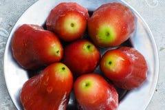 Syzygium στο stanless πιάτο αλουμινίου στοκ φωτογραφία