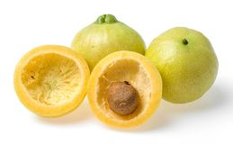 Syzygium jambos rose apple Stock Images