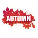 Szablon dla projekta horyzontalny sztandar dla jesień sezonu Znak z teksta spadkiem na czerwonym tle z a Zdjęcia Stock