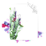 Szablon dla zaproszenie projekta z akwareli pluśnięciem i konturem świeżego kwiatu i atramentu Zdjęcia Stock