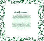 Szablon karty dla rośliny tła zieleń Ilustracji