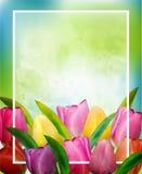 Szablon rama dla kartki z pozdrowieniami na międzynarodowym kobieta dniu lub matka dniu również zwrócić corel ilustracji wektora ilustracja wektor