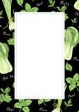Szablon zieleni warzywa z literowaniem: cebula, pietruszka, basil i bok choy, akwarela obraz royalty ilustracja