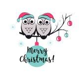Szablonu wektoru karta z ślicznymi sowami na gałąź Wesoło bożych narodzeń snowlake, piłki i tekst, szczęśliwego nowego roku, ilustracja wektor