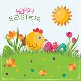 Szablonu Wielkanocny kartka z pozdrowieniami, kurczątko, wektor Obrazy Stock