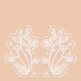 Szablonu zaproszenia lub powitania karta z z koronkowymi kwiatami Różowy tło Zdjęcia Stock