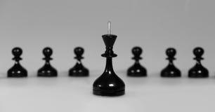 Szachowe czarny i biały postacie Zdjęcia Stock